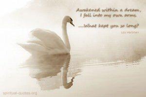 Awakened within a dream