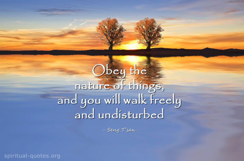 Seng T'san spiritual quote