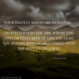 Charles Cook Quotes