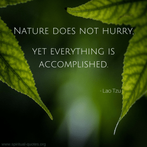"Lao Tzu Quote ""Nature does not hurry, yet everything is accomplished."""