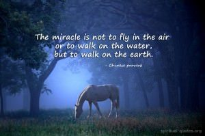 The real miracle - quote