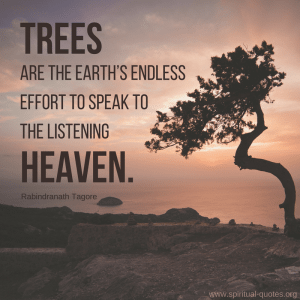 """Rabindranath Tagore Quote """"Trees are the earth's endless effort to speak to the listening heaven."""""""
