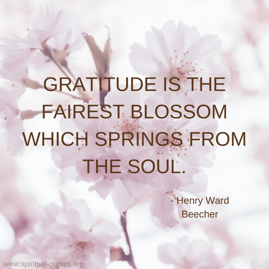 """Henry Ward Beecher Quote """"Gratitude is the fairest blossom which springs from the soul."""""""
