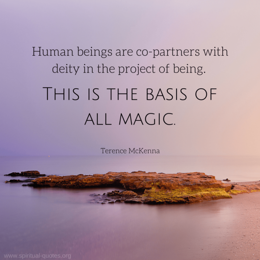 "Terence McKenna Quote about Deity ""This is the basis of magic."""